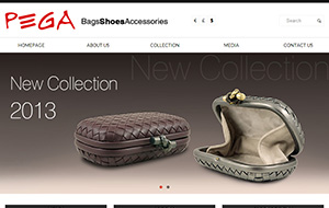 Pega Leather Web Sitesi