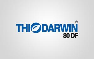 Thiodarwin Logo Tasarımı